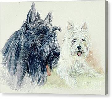 Scottie And Westie Canvas Print by Morgan Fitzsimons