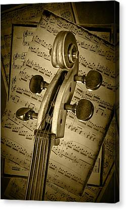 Scroll Of A Cello Stringed Instrument In Sepia Canvas Print by Randall Nyhof