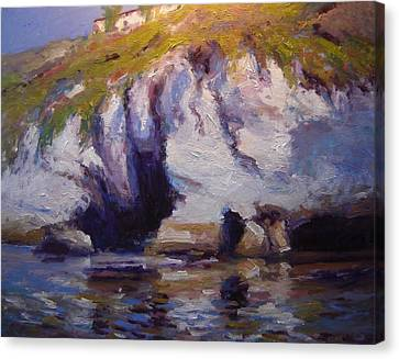 Sea Cliffs In Afternoon Light Canvas Print by R W Goetting
