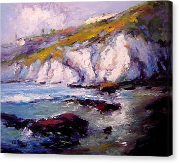 Sea Cliffs In The Sun Canvas Print by R W Goetting