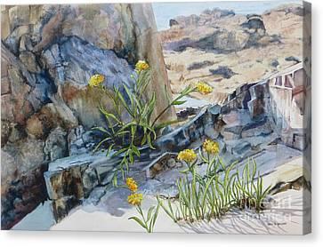 Sea Rock Posies Canvas Print by Karol Wyckoff