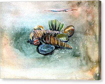 Sea Shells Canvas Print by Mindy Newman