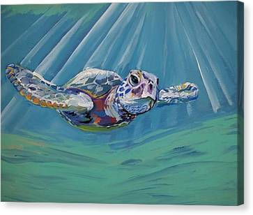 Sea Turtle  Canvas Print by Anne Seay
