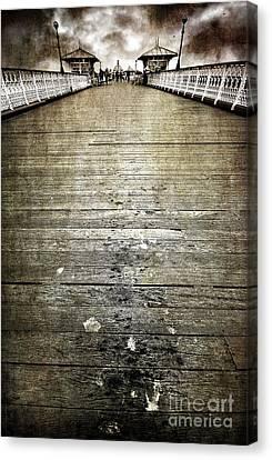 Seagull Bombing Run Canvas Print by Meirion Matthias