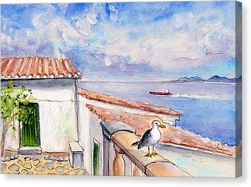 Seagull In Cap De Formentor Canvas Print by Miki De Goodaboom