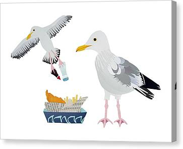 Seagulls Canvas Print by Isobel Barber