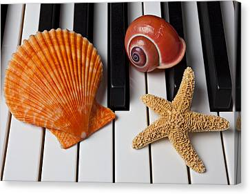Seashell And Starfish On Piano Canvas Print by Garry Gay