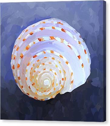 Seashell Iv Canvas Print by Jai Johnson