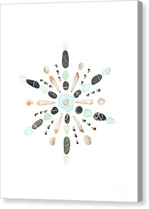Seashell Snowflake 5 Canvas Print by Jennifer Booher