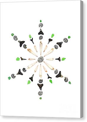 Seashell Snowflake 6 Canvas Print by Jennifer Booher
