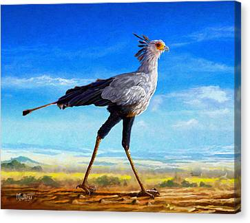 Secretary Bird Canvas Print by Anthony Mwangi