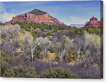 Sedona Landscape - 2 - Arizona Canvas Print by Nikolyn McDonald