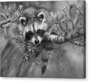 Seeking Mischief - Black And White Canvas Print by Lucie Bilodeau