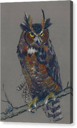 Seeking Owl  Canvas Print by Christine Camp