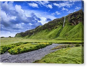 Seljalandsfoss Iceland Canvas Print by Wendy White