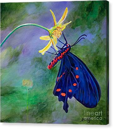 Semperi Swallowtail Butterfly Canvas Print by AnnaJo Vahle
