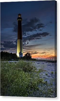 Sentinel Of The Dunes Canvas Print by Rick Berk
