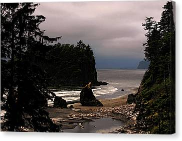 Serene And Pure - Ruby Beach - Olympic Peninsula Wa Canvas Print by Christine Till