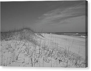 Serene Lookout Canvas Print by Betsy C Knapp