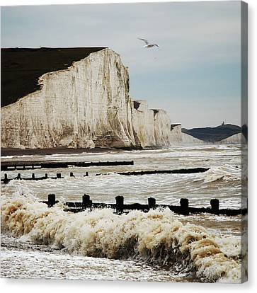 Seven Sisters Chalk Cliffs Canvas Print by Peter Funnell