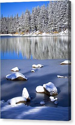 Shadowed Coolness Canvas Print by Chris Brannen