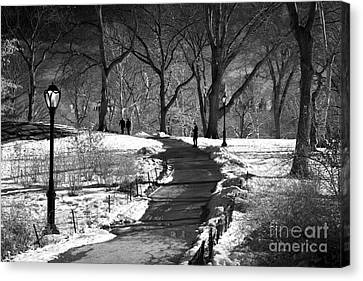Shadows In Central Park Canvas Print by John Rizzuto