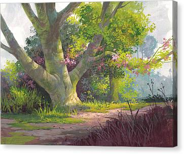 Shady Oasis Canvas Print by Michael Humphries