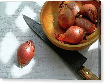 Shallots Canvas Print by James Temple
