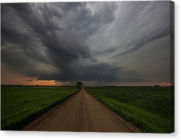 Sharknado  Canvas Print by Aaron J Groen