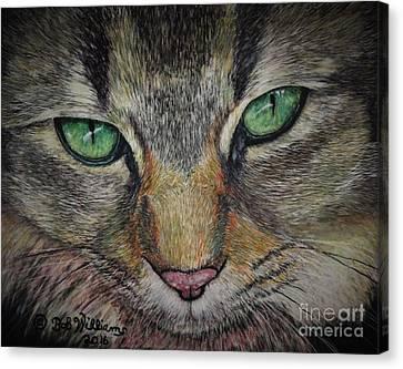 Sharna Eyes Canvas Print by Bob Williams