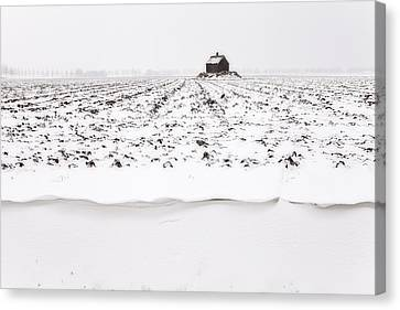 Shed On Mount In Snow, Polder The Biesbosch, Dordrecht, The Netherlands Canvas Print by Frank Peters