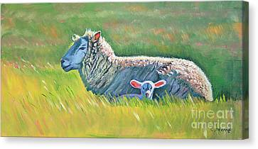 Sheep At Red Hill Farms Canvas Print by Colleen Proppe