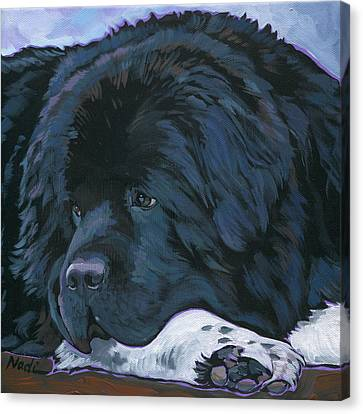 Shelby Canvas Print by Nadi Spencer