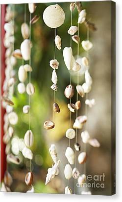 Shell Windchimes Canvas Print by Kyle Rothenborg - Printscapes