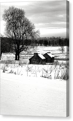 Shelters In The Snow Canvas Print by Olivier Le Queinec