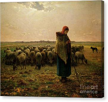 Shepherdess With Her Flock Canvas Print by Jean Francois Millet