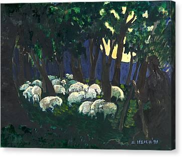 Shepherds Watch Canvas Print by Ethel Vrana