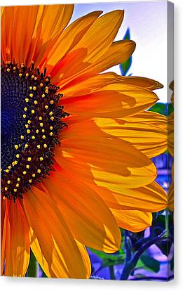 Shhhhh Canvas Print by Gwyn Newcombe