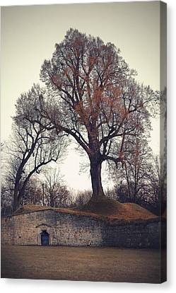 Shire Canvas Print by Joanna Jankowska