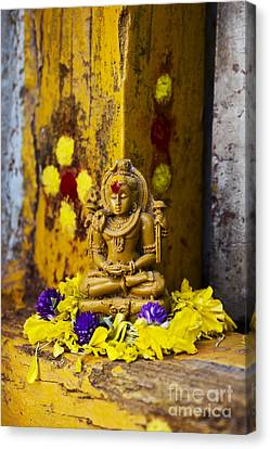 Shiva Devotion Canvas Print by Tim Gainey