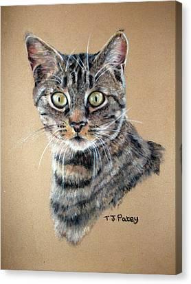 Shock Canvas Print by Tanya Patey