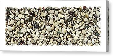 Shore Stones 3 Canvas Print by JQ Licensing