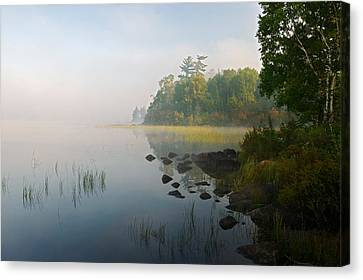Shoreline Trees And Grasses Along Nina Canvas Print by Panoramic Images