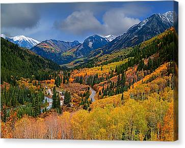 Show Me The Way Canvas Print by Tim Reaves