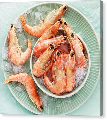 Shrimp On A Plate Canvas Print by Anfisa Kameneva