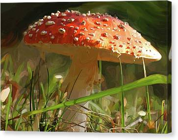 Shroom Time Canvas Print by Patti Siehien