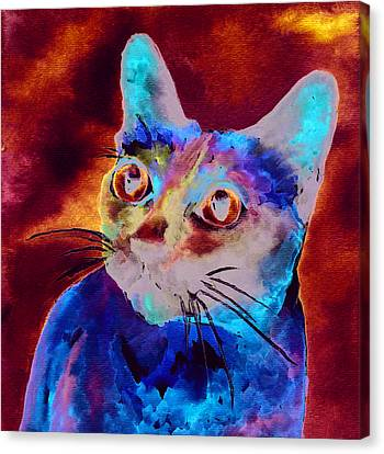 Siamese Cat Canvas Print by Christy  Freeman
