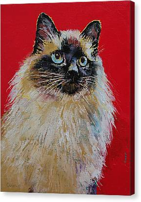 Siamese Cat Portrait Canvas Print by Michael Creese