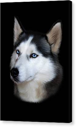 Siberian Husky Dog Canvas Print by Julie L Hoddinott