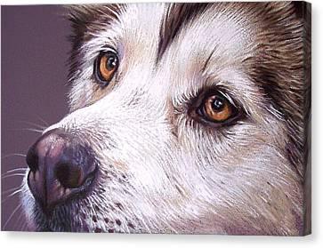 Siberian Husky Canvas Print by Elena Kolotusha